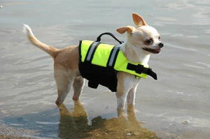 Paws Aboard Neon Yellow Doggie Life Jacket