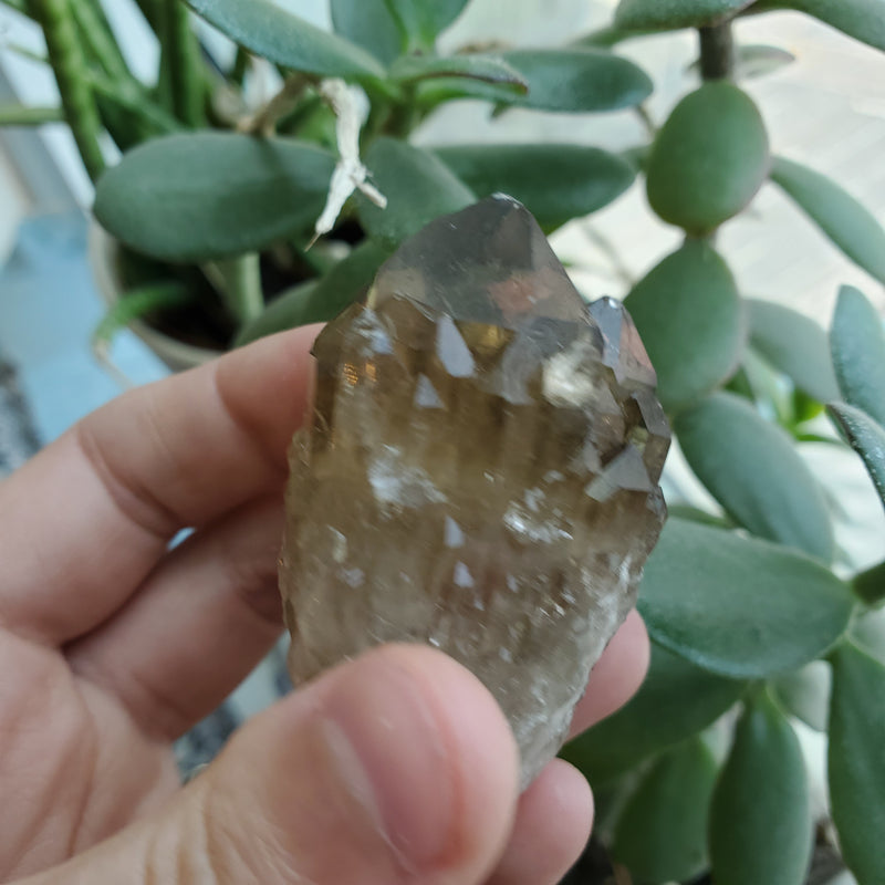 84 g Smoky Gold Kundalini Quartz Citrine, Democratic Republic of Congo, Lwena, Congo Citrine