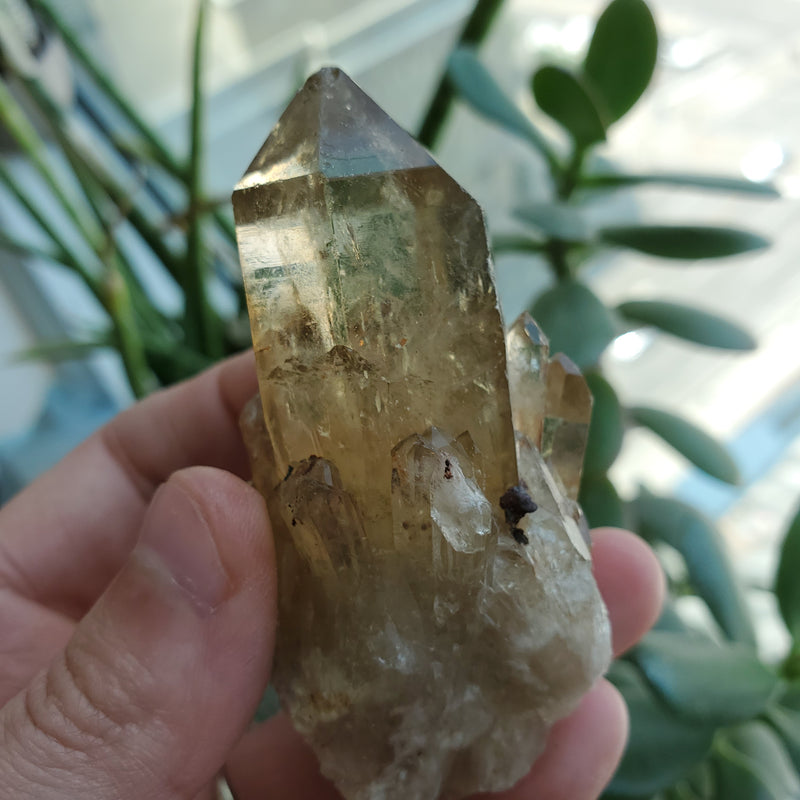71.8 g Golden Kundalini Quartz Citrine, Democratic Republic of Congo, Lwena, Congo Citrine