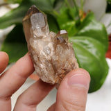 Wholesale Flat of Kundalini Quartz Crystals, 52 Pieces, Jewelry Making Size Range, Kundalini Quartz, Democratic Republic of Congo