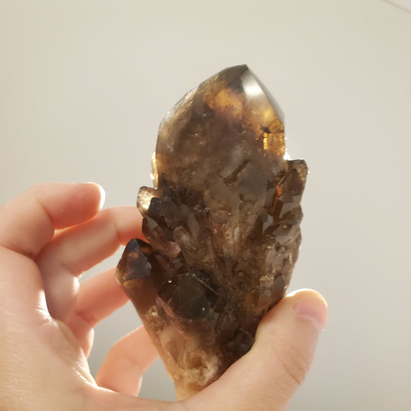 "4.01"" Huge, Self-Standing, Smoky Gold Kundalini Quartz Crystal, Democratic Republic of Congo, Lwena, Congo Smoky Quartz"