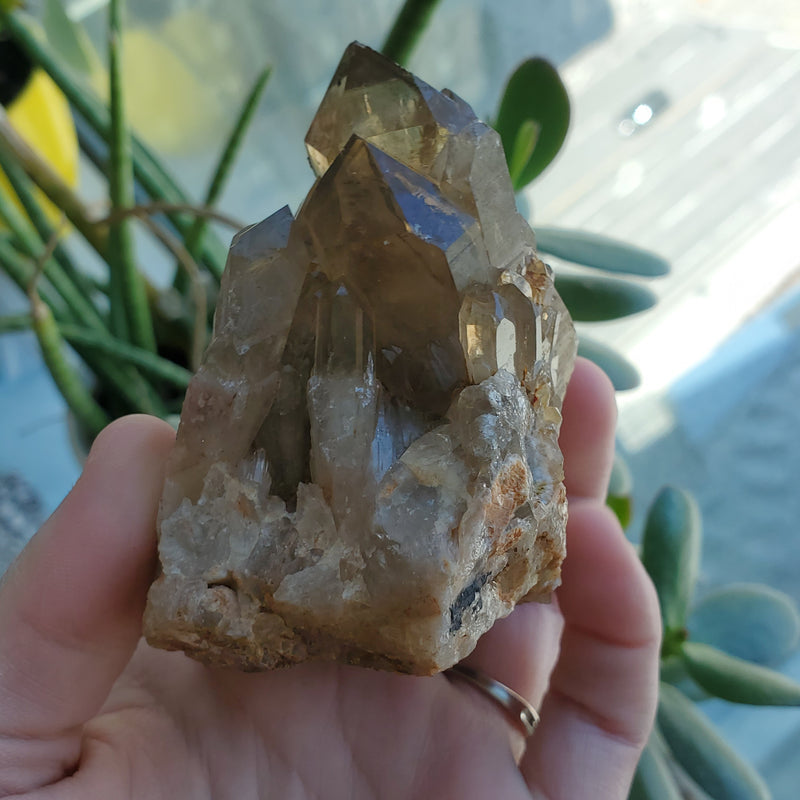 "2.99"" Self-Standing, Deep Smoky Gold Kundalini Quartz Crystal Cluster, Democratic Republic of Congo, Lwena, Congo Smoky Quartz"