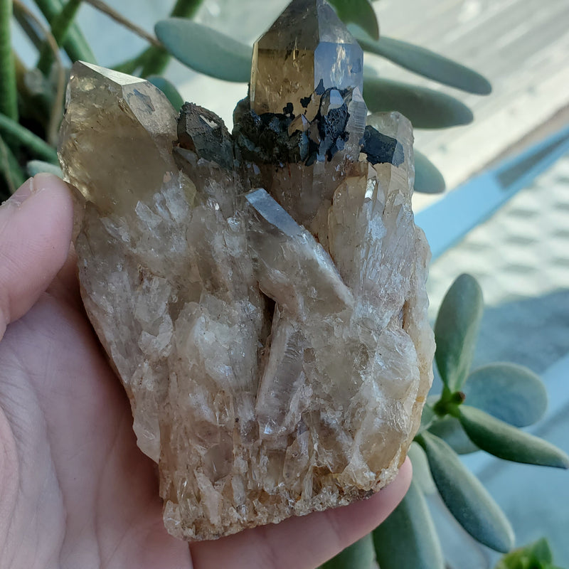 "3.7"" Self-Standing, Twinned Kundalini Quartz, Democratic Republic of Congo, Lwena, Congo Smoky Quartz"