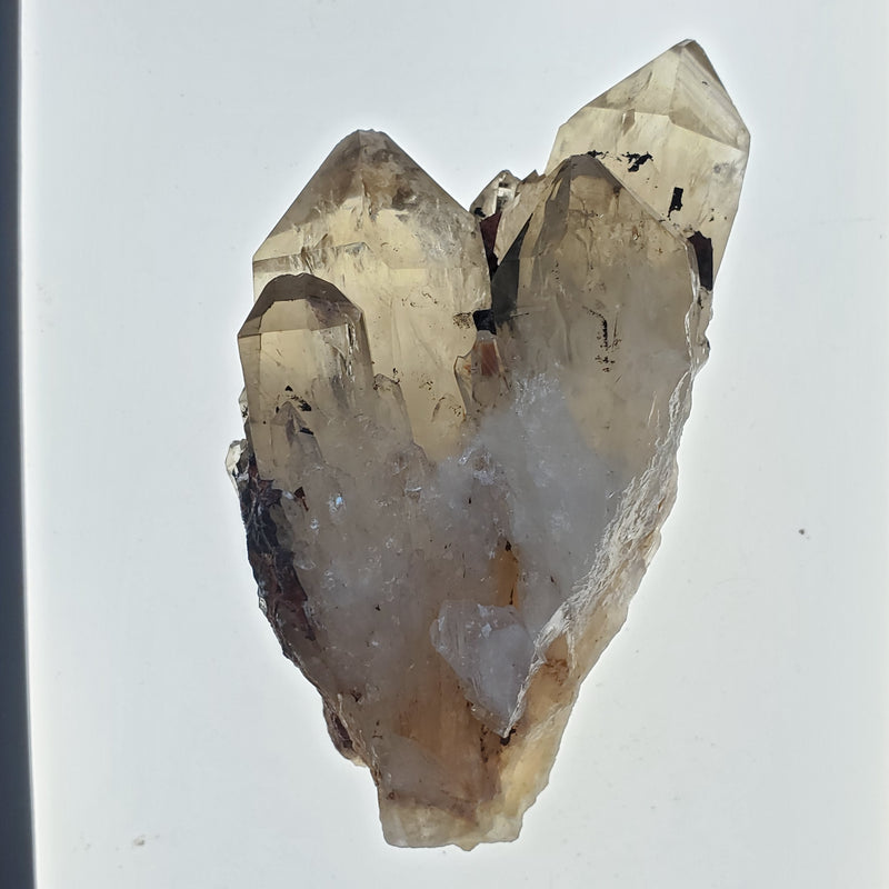 "Large 3.38"" Twin Termination Kundalini Quartz, Democratic Republic of Congo, Lwena, Congo Smoky Quartz"
