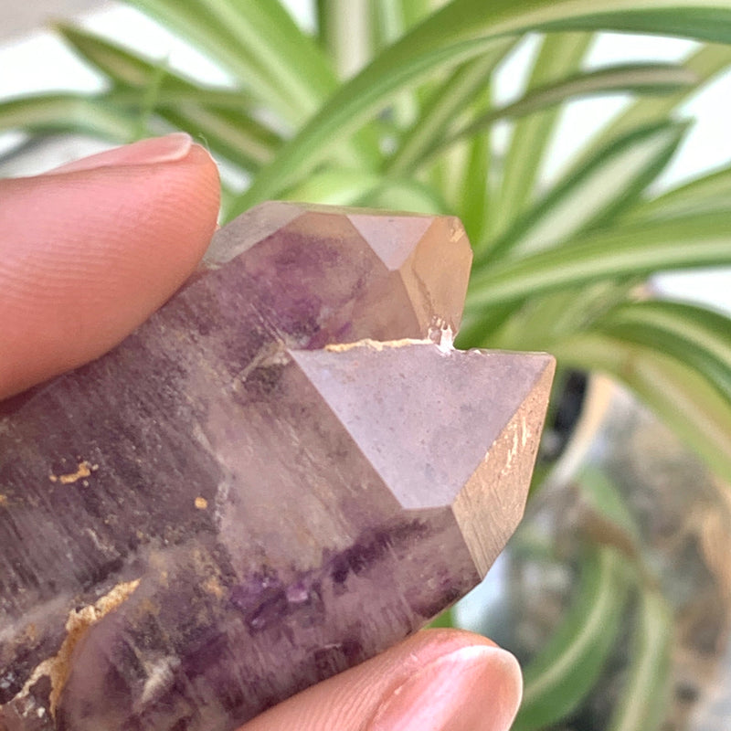 34g Really Smokey Shangaan Amethyst From Chibuku Mine Zimbabwe