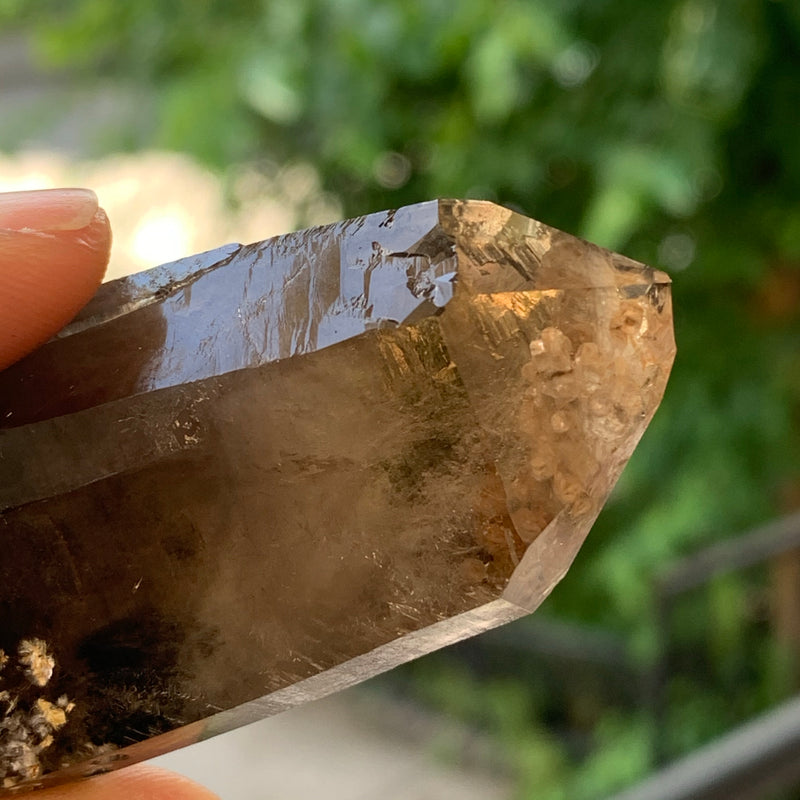 "4"" Smokey Quartz from Mulanje, Malawi, Africa"