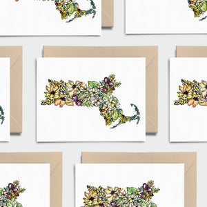 MASSACHUSETTS WILD: Set of 8 Notecards + Kraft Envelopes + Stickers