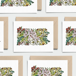 PENNSYLVANIA WILD: Set of 8 Notecards + Kraft Envelopes + Stickers
