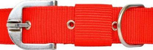 Nylon Collar - Red