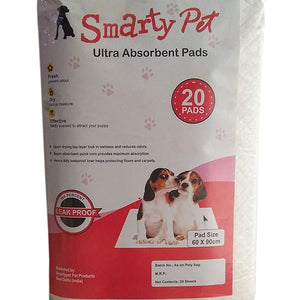 Potty Training Pads (20 Pieces)