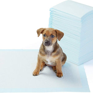 Potty Training Pads