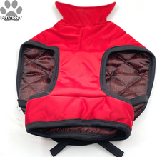 "Load image into Gallery viewer, ""Trick for Treat"" Coat - Red"