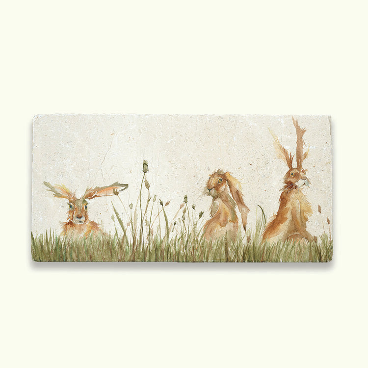 Family of hares sharing platter