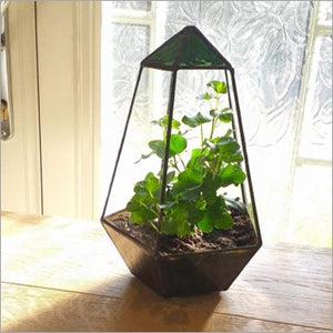 The Thomas - handmade stained glass terrarium