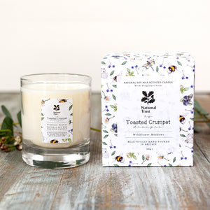 Wildflower meadows bee - glass candle & seed packet
