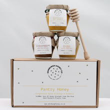 Load image into Gallery viewer, Pantry honey gift set (3 jars) gingerbread, orange & turmeric