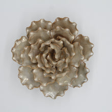 Load image into Gallery viewer, Coral 6 - Rose Grey