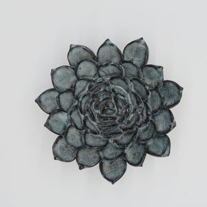 Ceramic succulent blue grey - large