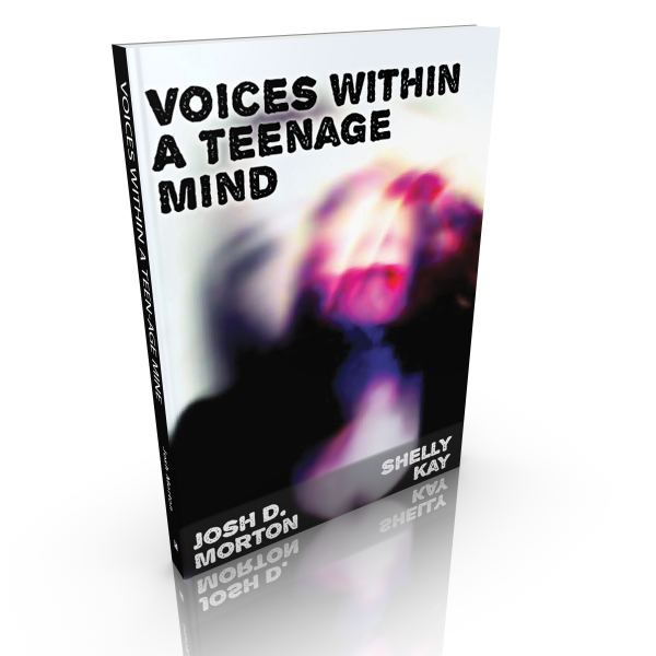 Voices within a Teenage Mind – 2016 Edition
