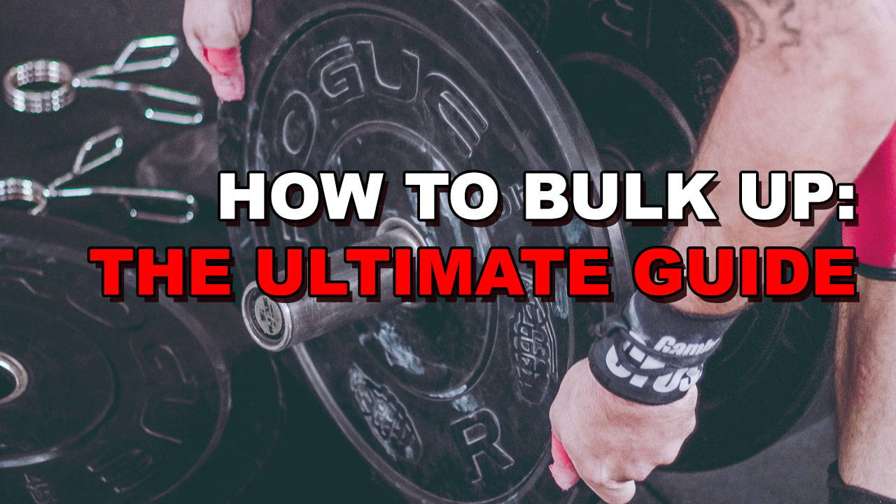 What is Bulking? The Ultimate Guide To Easily Gaining Mass