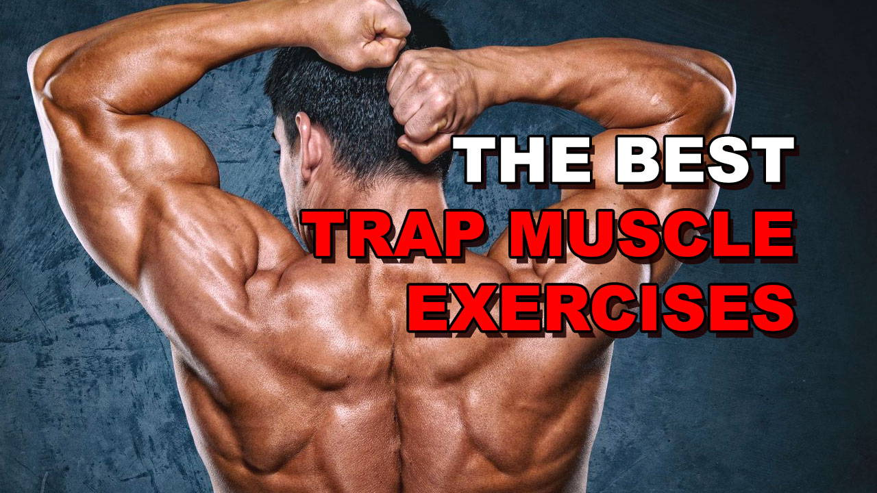 The 5 Best Trap Muscle Exercises For Rapid Growth