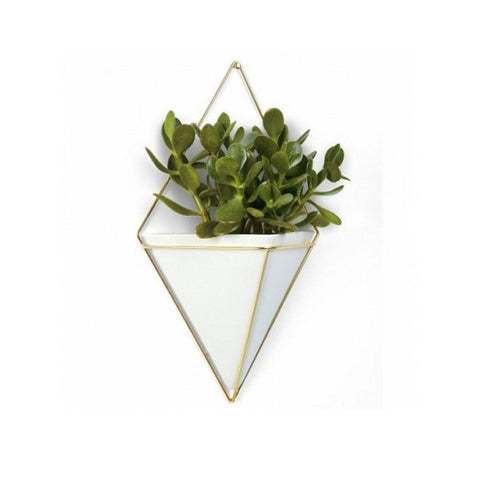 Gold Trigg Wall Vessel Large | Decor