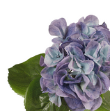 Floral | Hydrangea Blue 33cmL