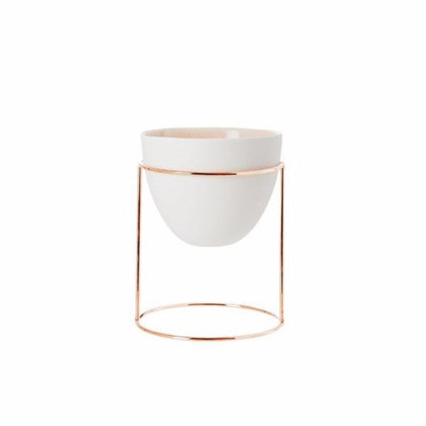 Ivy Muse | NEST Copper & Peach Eggshell