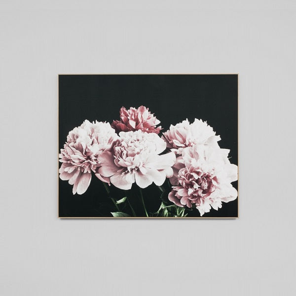 Blush Peonies | Art