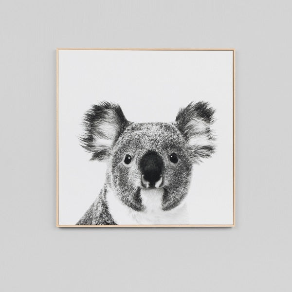 Koala Small Canvas | Art