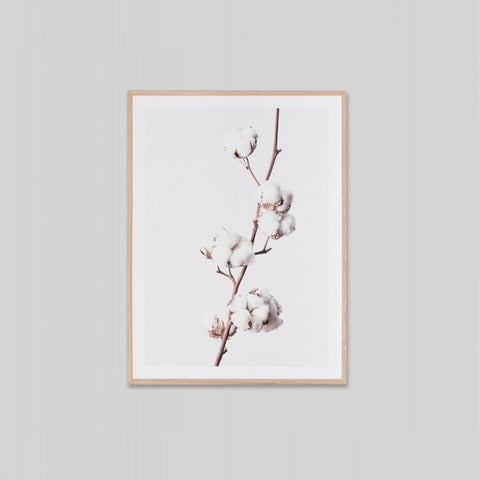 White Cotton Framed | Art