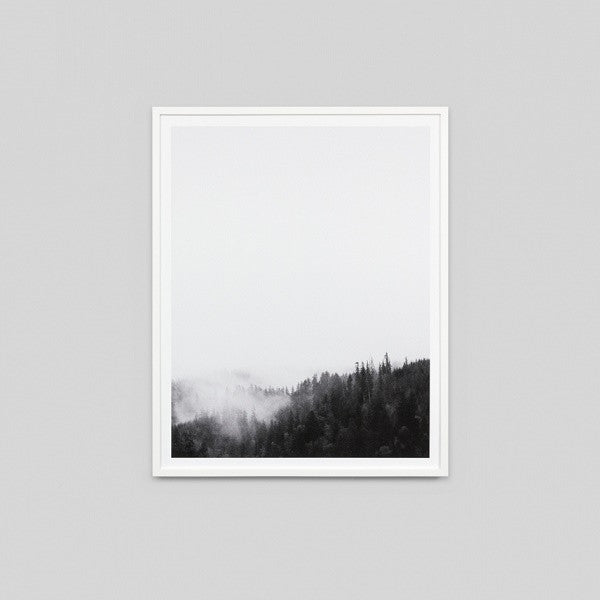 Forest View Framed | Art