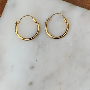 Small Gold Tone Thin Hoop Earrings