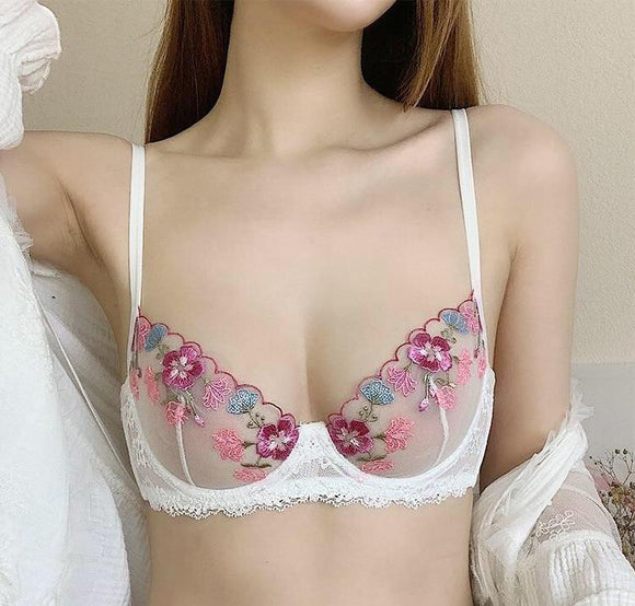 Aaliyah Embroidery Lace Bra Ultra-thin Transparent hong underwear suits bra works
