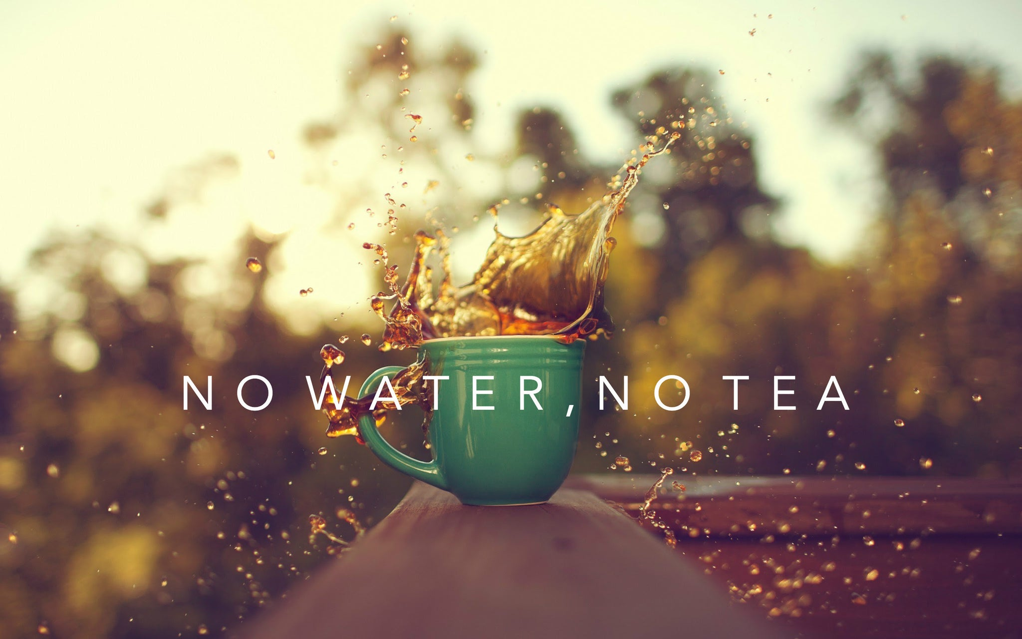 No Water, No Tea