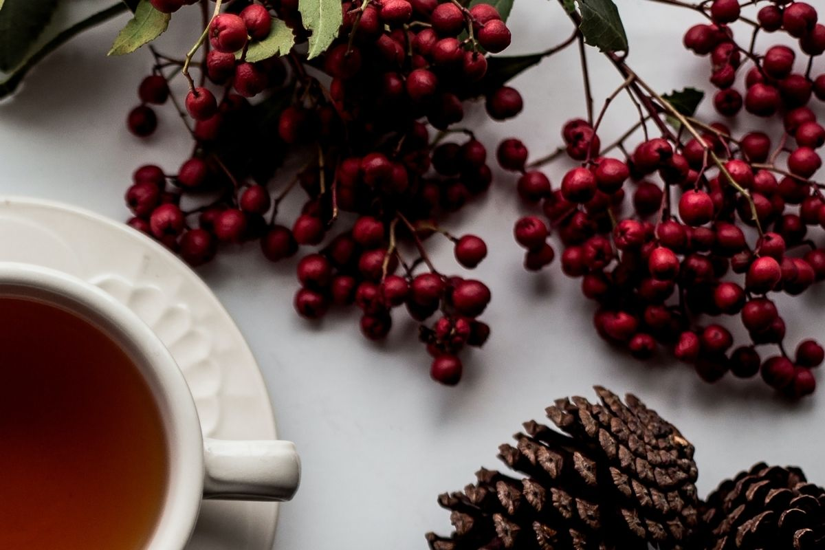 cup of tea next to pine cone and red berries