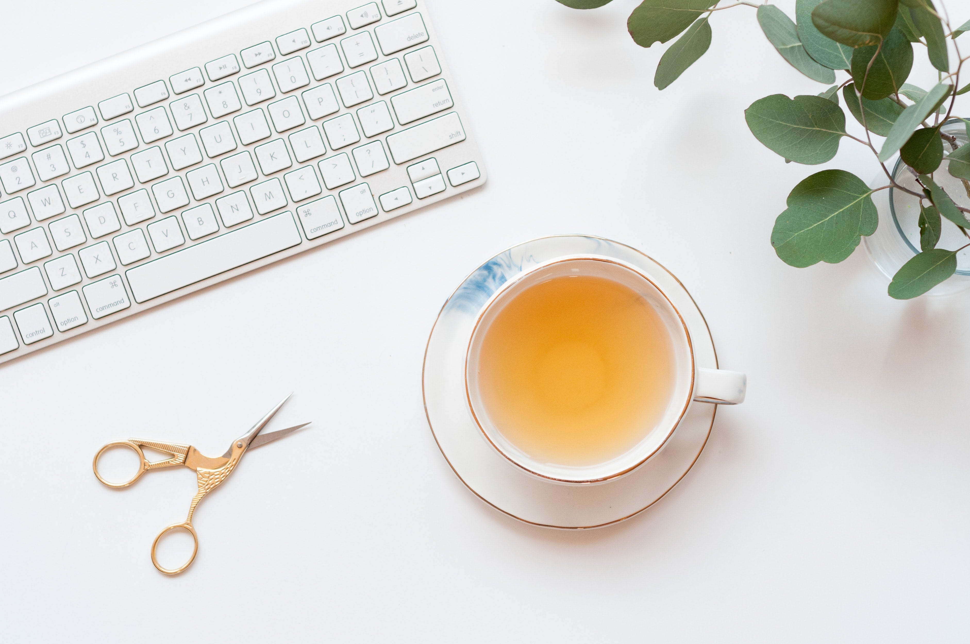 yellow tea in cup next to keyboard and plant