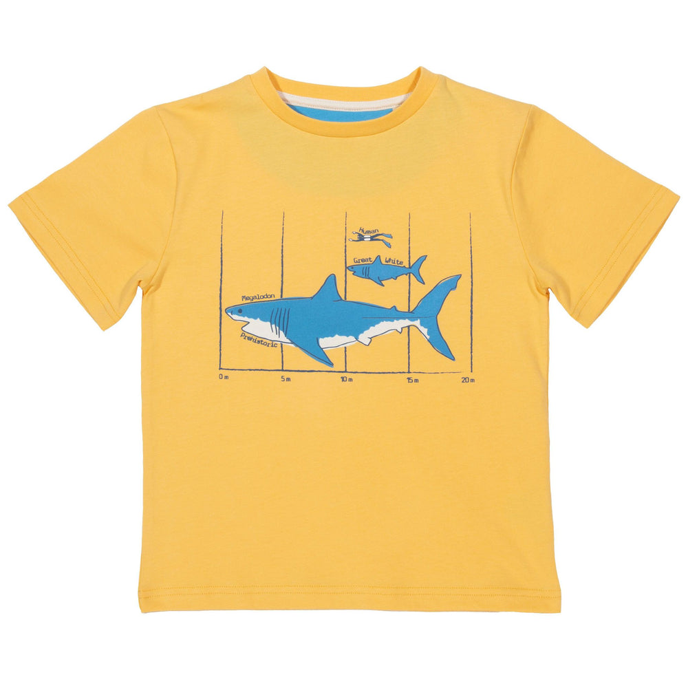 Kite Megalodon T-Shirt - Small and Awesome