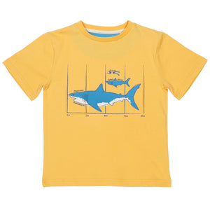 Load image into Gallery viewer, Kite Megalodon T-Shirt - Small and Awesome