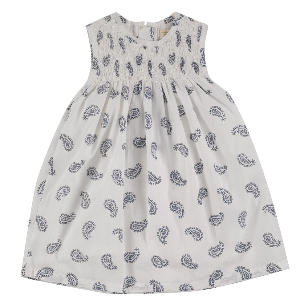 Pigeon Organics Sleeveless Navy Smock Dress- Paisley - Small and Awesome