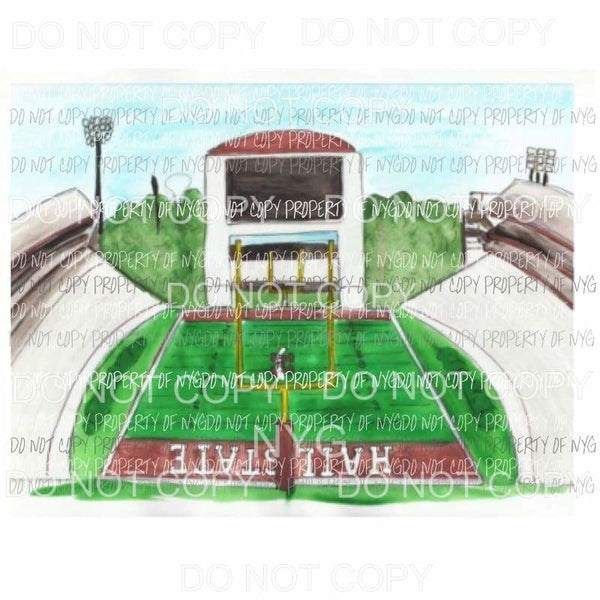 Hail state Stadium Sublimation transfers Heat Transfer