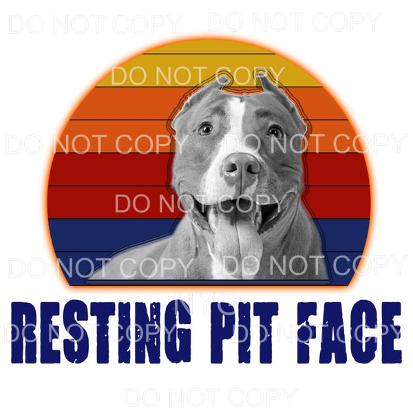 Resting Pit Face Pitbull Sublimation transfers - Heat