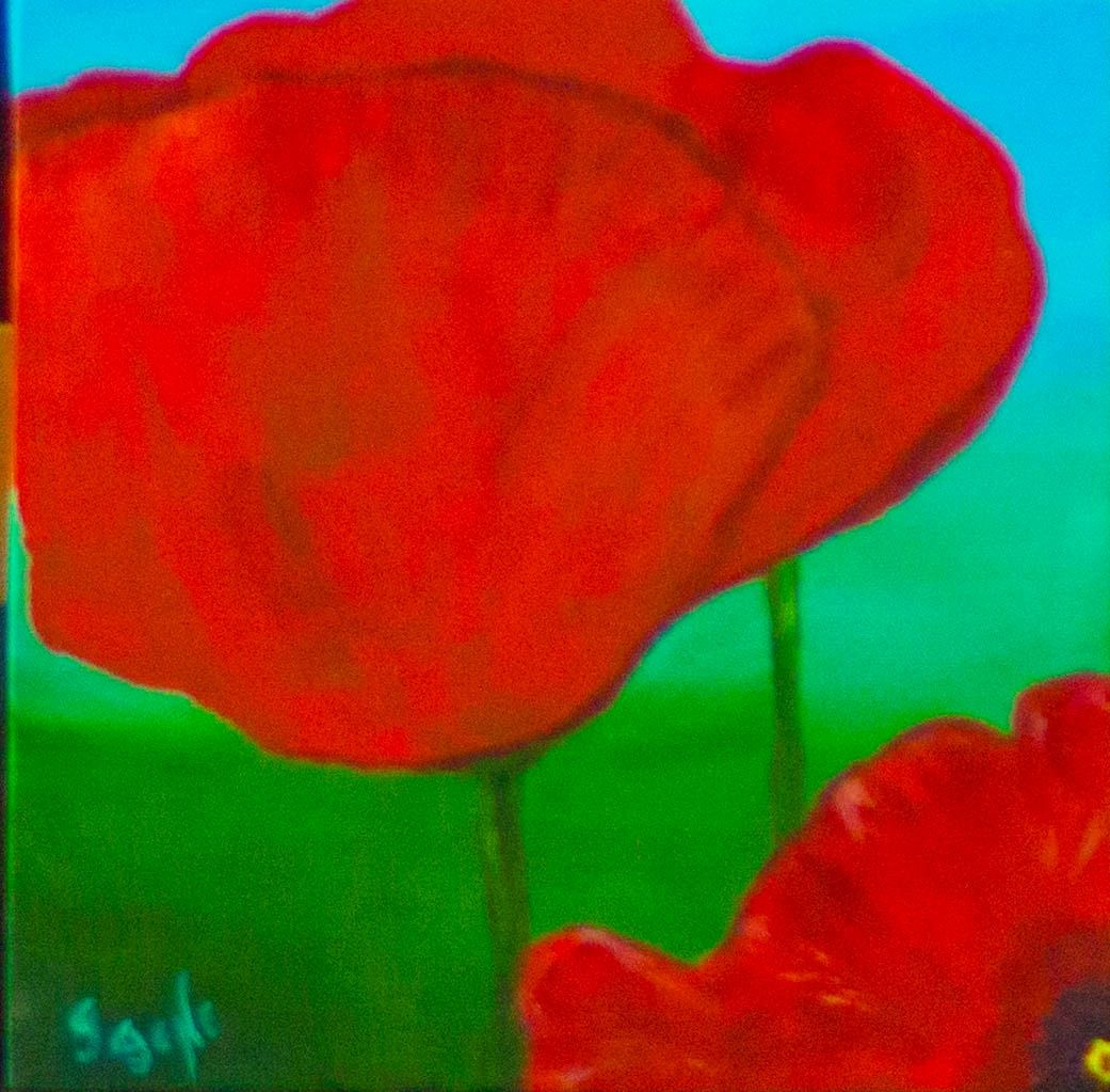 Peaceful Poppies #1 12x12