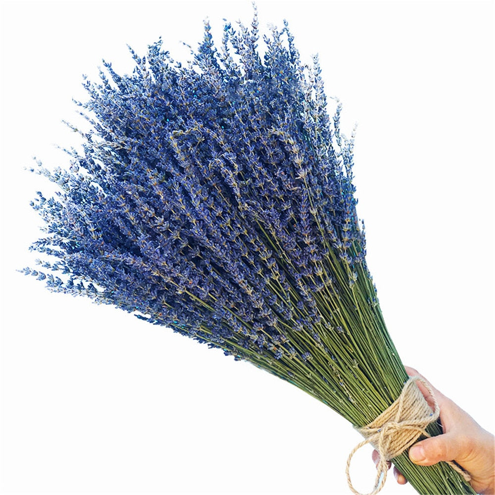 Natural Dried Lavender Bundles