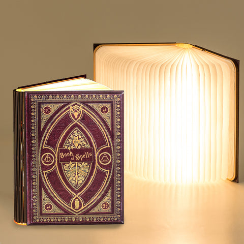 Harry Potter Themed Book Light - Various Hogwarts Colours