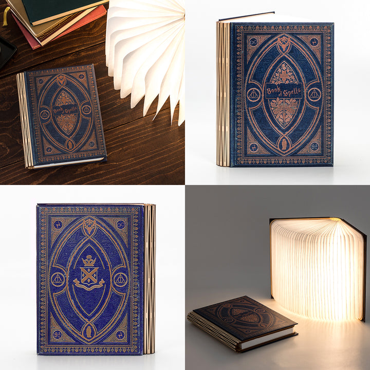 Harry Potter Themed Small Multi-Colour Book Light - 6 Hogwarts Colours