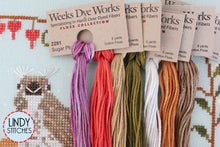 Load image into Gallery viewer, Edna Goes to Brunch Floss Pack 7 Skeins Weeks Dye Works