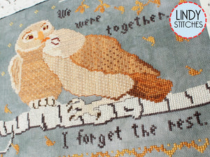 PDF I Forget The Rest Cross Stitch Pattern by Lindy Stitches