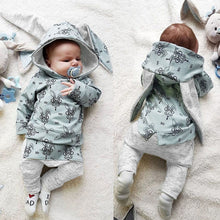 Load image into Gallery viewer, Baby Bunny Outfit
