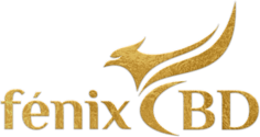 Fenix-Wellbeing-International
